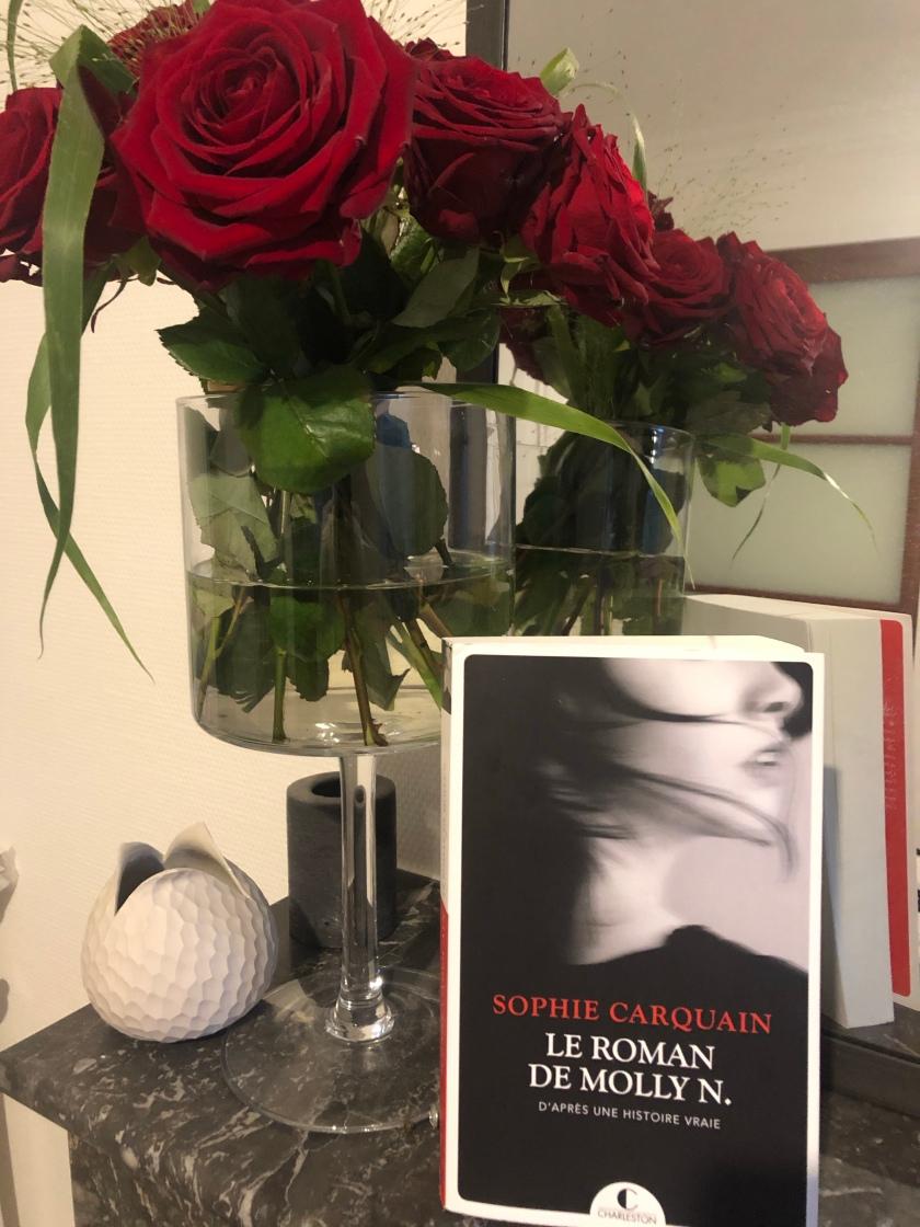 Le roman de Molly N., Sophie Carquain