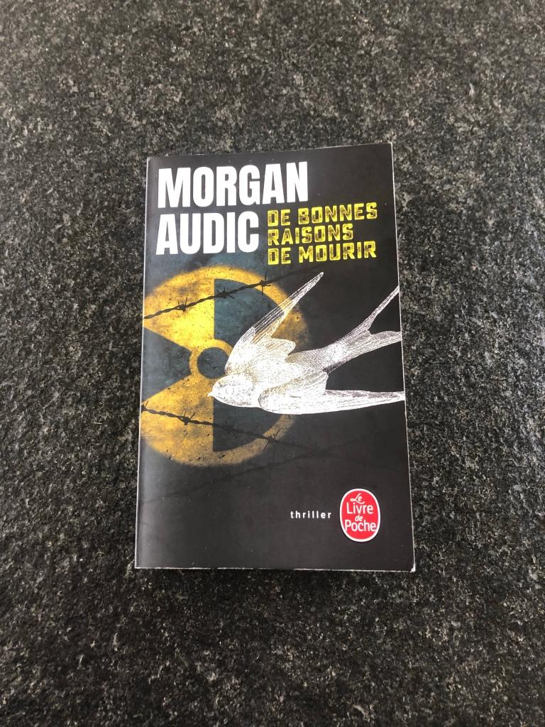De bonnes raisons de mourir, Morgan Audic